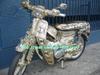 Bikep1090632